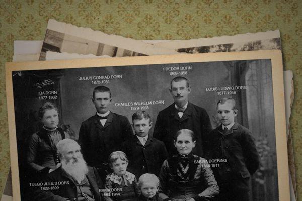 Dorn Family Reunion - What do you do for a living?