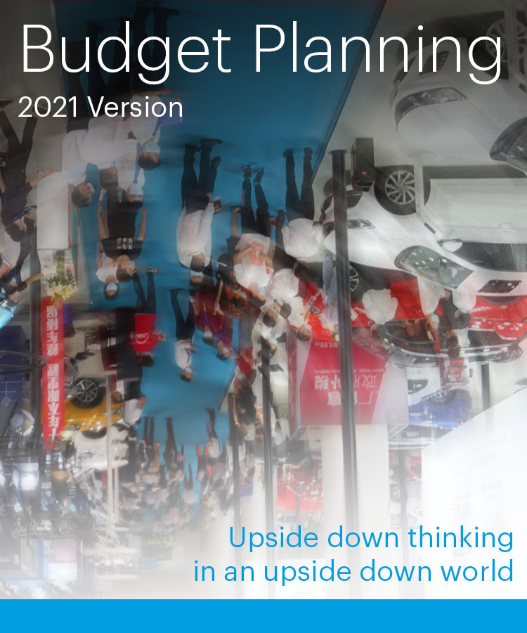 Budget Planning - 2021 Version...Upside Down Thinking in an Upside Down World - Idea International, Inc.